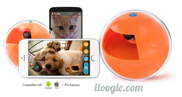 playbet pelota camara mascotas celular